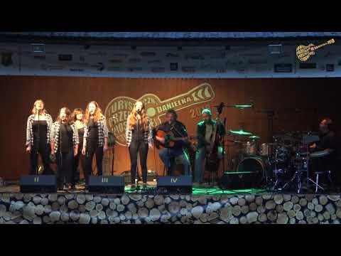 Kostka Cukru i Zespół Z Ptasimi Piórami – Protest Song Chomika (Danielka 2018)
